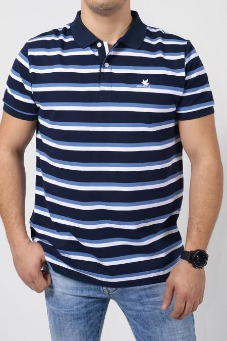 Polo with Stripes - Blue/White
